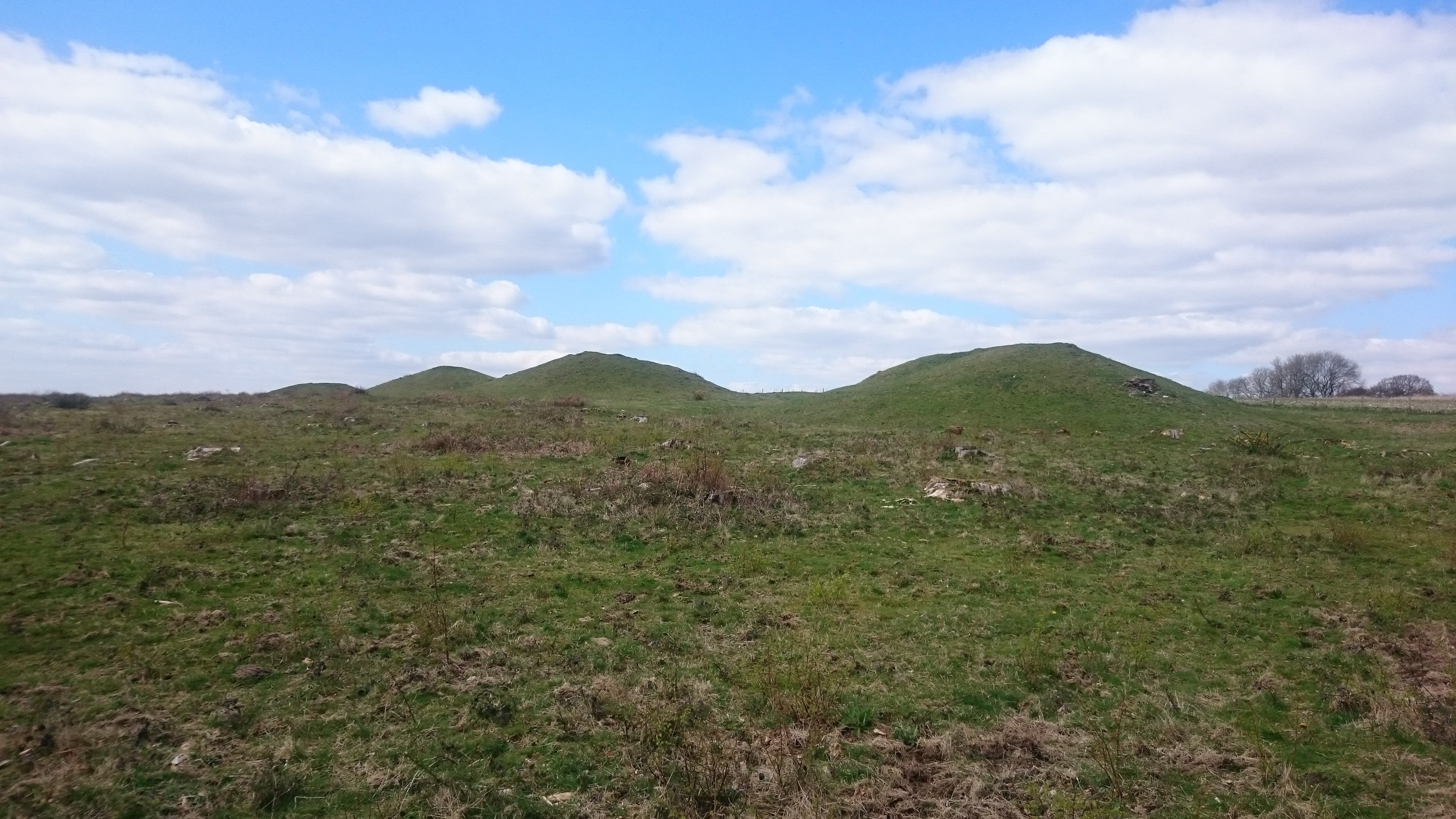 Ancient Britain: Devil's Humps and Jumps