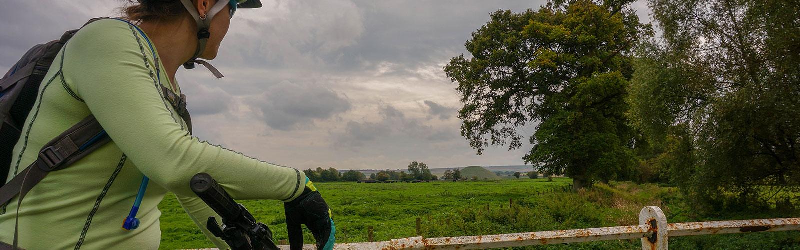 Archaeo-Safari: Avebury Uncovered