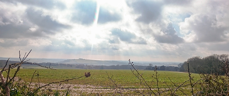 Hike a bike, South Downs Style: Classic Type 2 fun on Butser Hill